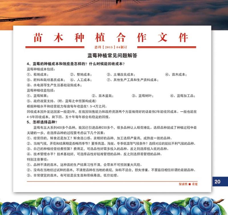 种植合作手册11.jpg